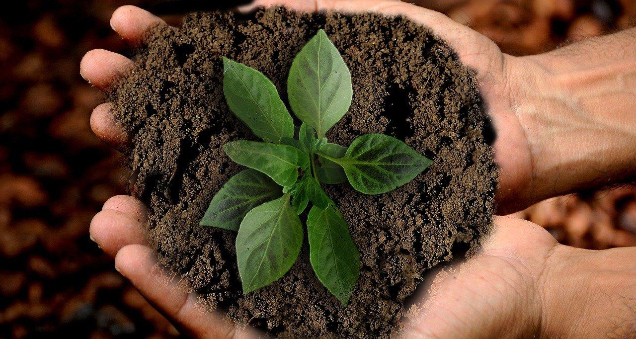 Teaser Nachhaltigkeit Ziele