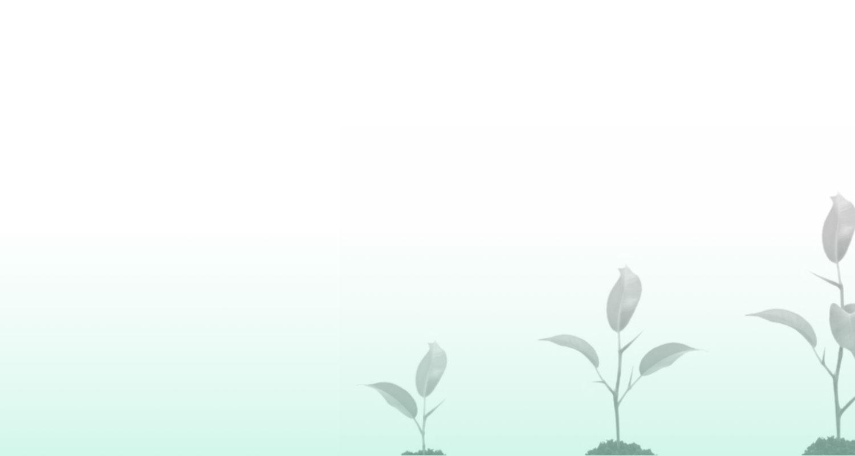 Teaser Nachhaltigkeit