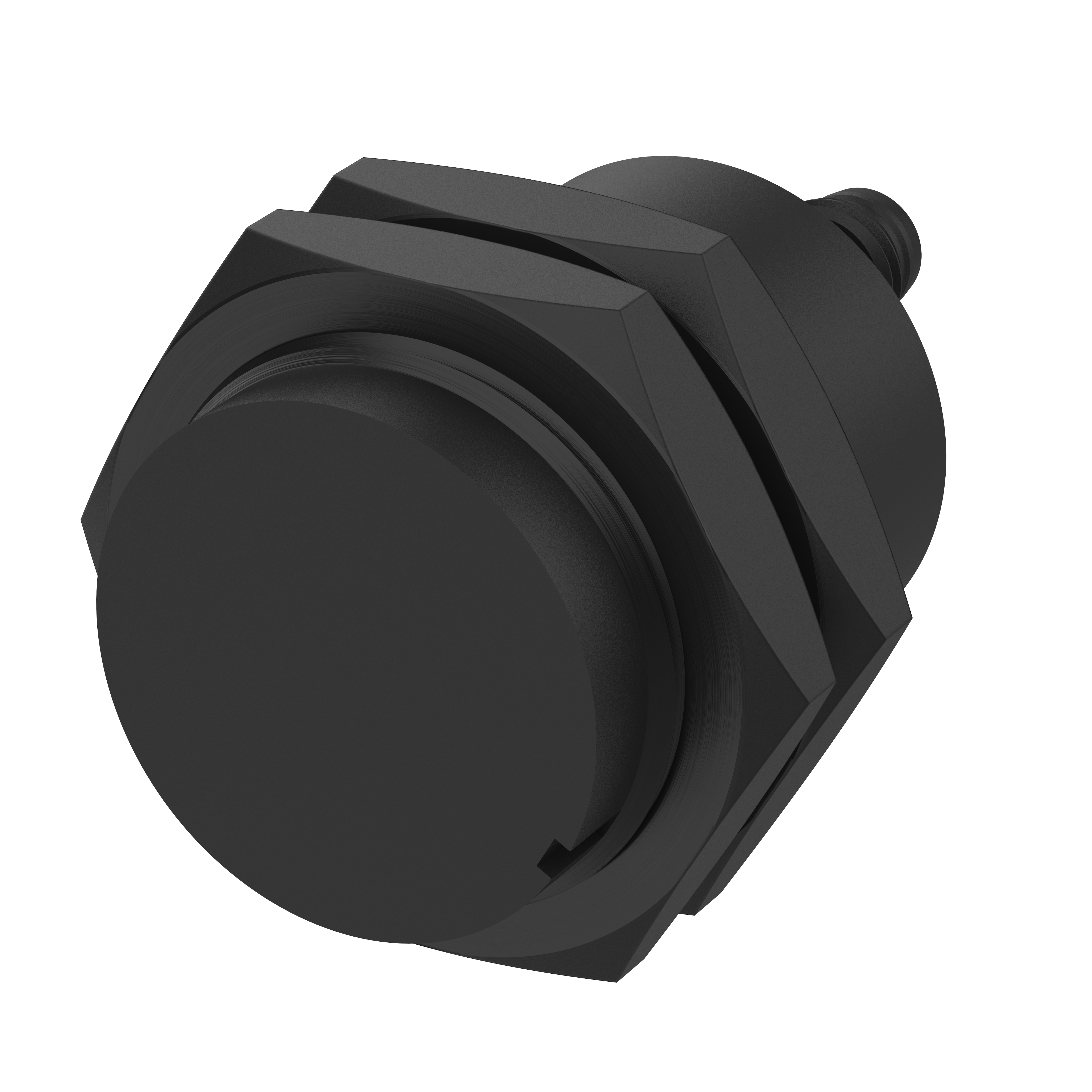 Sicherheitssensor - 171271A0E - magnetisch betätigt - Schließer/Öffner, Einbaustecker M8